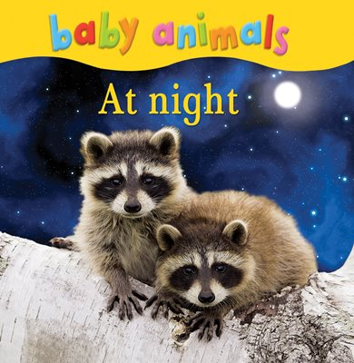 Book cover for Baby Animals: At Night